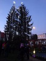 Rozsvěcování vánočního stromu